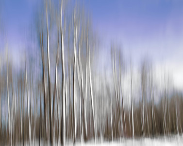 IMG_1157-Edit-3