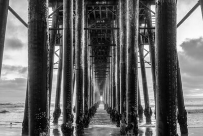 The Pilings - BW