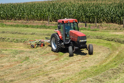 Farmer -raking-07165