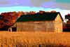 The Barn ~ 005