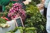 02 09 08 Austin Farmers Market (39 1)