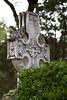 08 23 08 Oakwood Cemetery-6