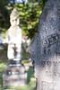 08 23 08 Oakwood Cemetery-19