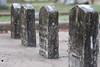 08 23 08 Oakwood Cemetery-2