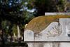 08 23 08 Oakwood Cemetery-17