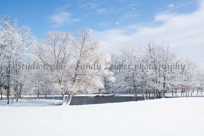 Snowy blanket of sunshine