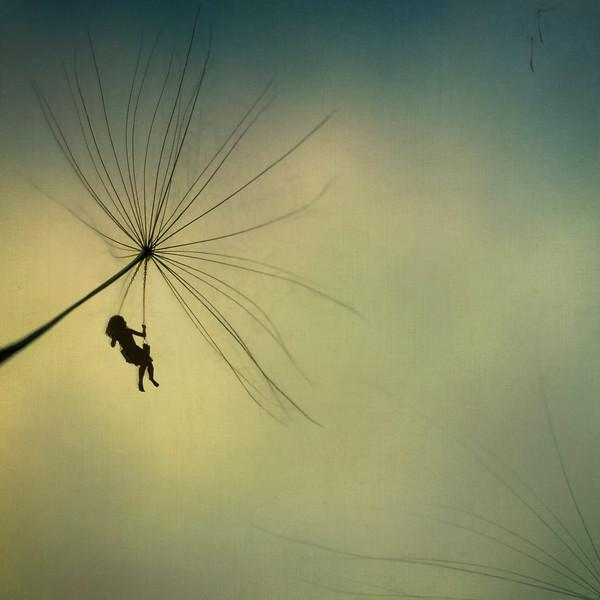 The Wish~