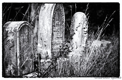 Tombstones of the forgotten