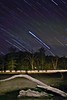 """Cooper Lake State Park - Star Trails <BR><BR>Want to buy a print of this image?  Click <a href=""""http://www.langfordphotography.com/For-Sale/Fine-Art/353198_rD3R59#!i=52036697&k=KBp2L"""">Here</a>!"""