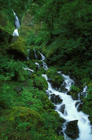 Wahkeena Falls, Columbia River Gorge, Oregon