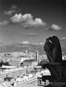 Gargoyle Overlooking the City Paris, France #S119-24-1