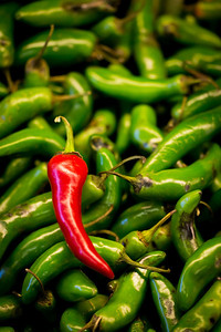 pepper_2013_003