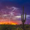 Saguaro Stormy Sunset II