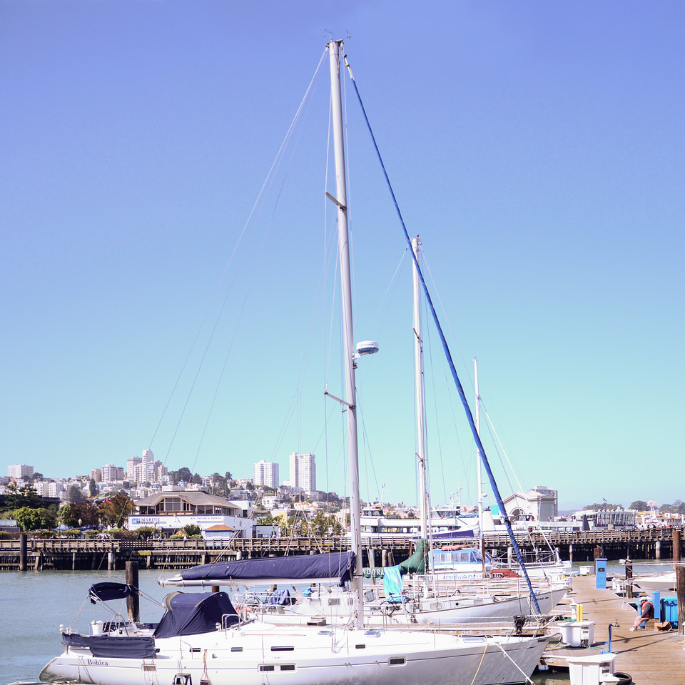 Sailboats docked at Fisherman's Wharf