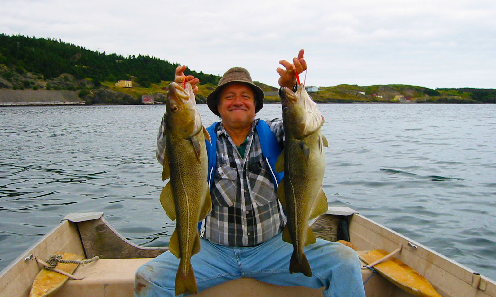 Don Kalshed loving the cod fishery