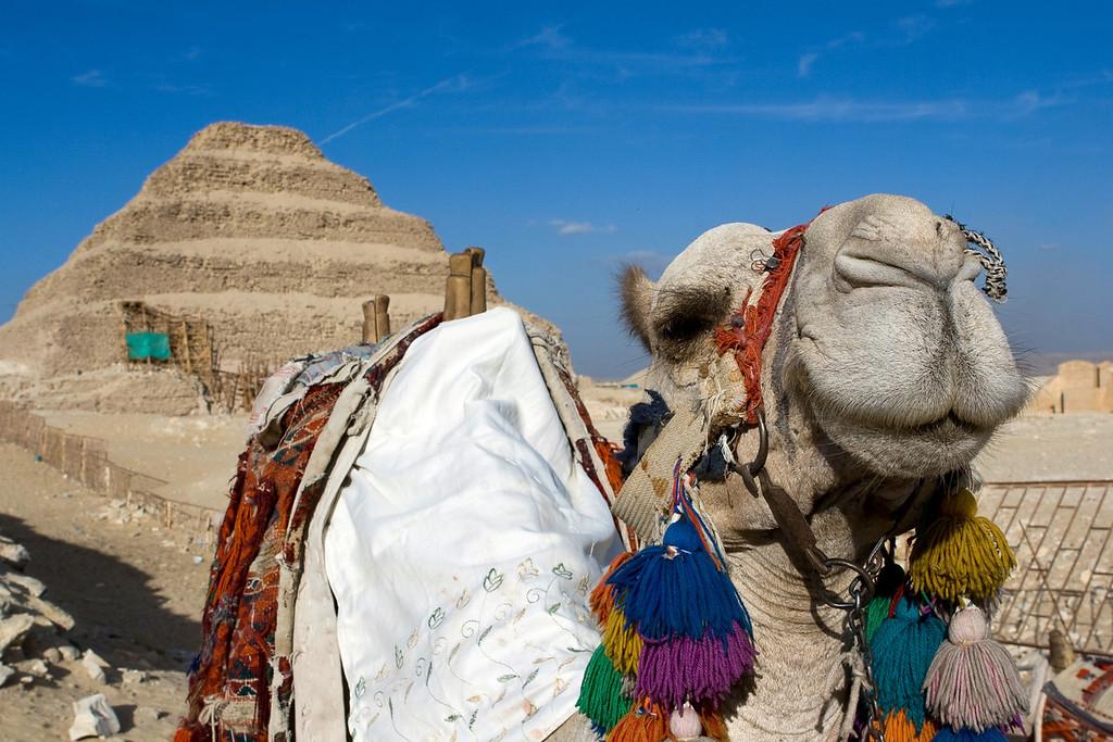 Saqqara Pyramids, Egypt. December 2009