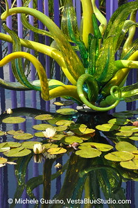 Denver Botanic Gardens Chihuly Exhibit Glass Swirls and Water Lilies