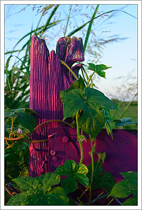 Purple Post