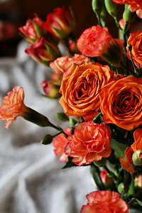 IMG#3329 Roses in Autumn Tones