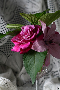 Rose and Clematis Duo with Hydrangea leaves