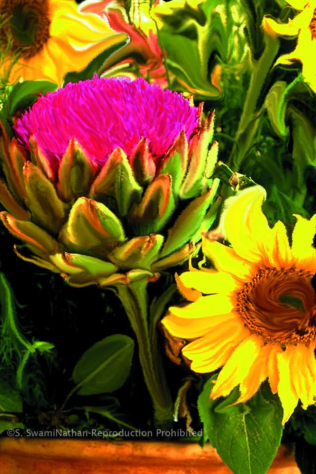Artichoke ands Sunflower, 1995