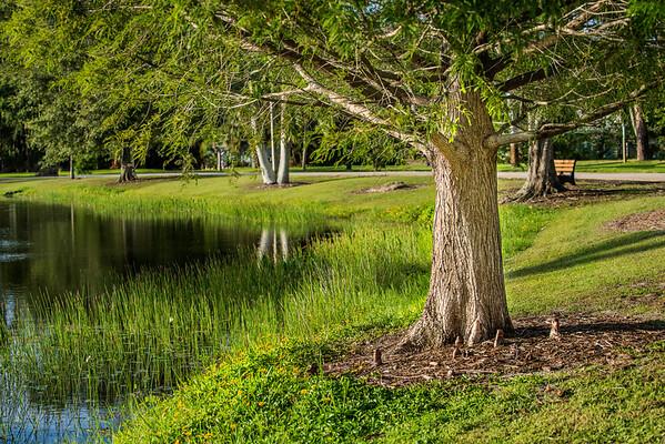 Stuart Pond