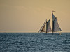 Schooner Appledore II - Key West Florida