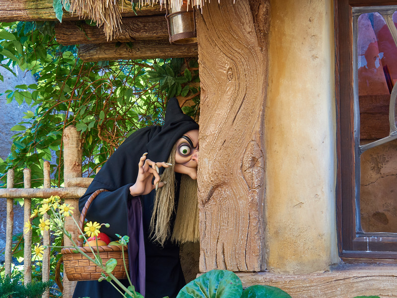 Beware of the Wicked Witch, Disney World - Orlando, Florida