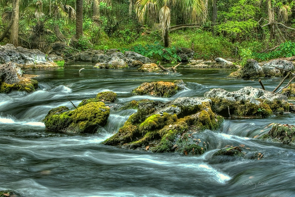 Hillsborough River Rapids