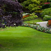 """Garden Scene at Butchart Gardens in Victoria, British Columbia. Butchart Gardens is a """"must see"""" fifty-five acres of stunning floral show gardens and a National Historic Site of Canada, located on Vancouver Island."""