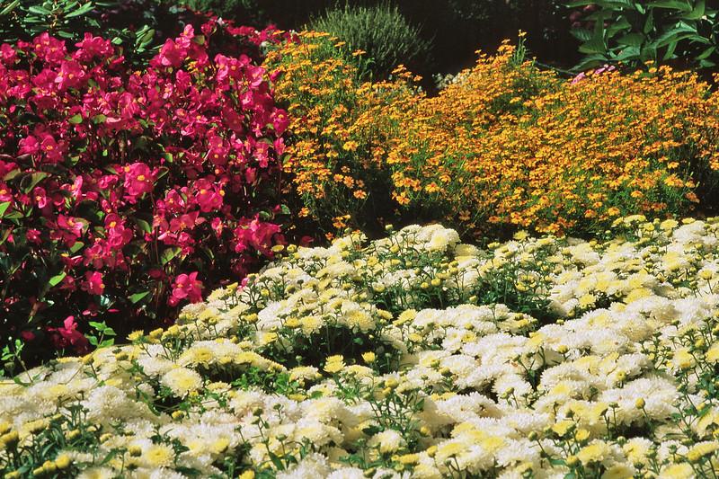 Garden scene in Butchart Gardens, Victoria, British Columbia, Canada.