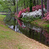 Photographer capturing reflections at the Azalea Overlook Gardne at Callaway Gardens in Pine Mountain, Georgia. Callaway Gardens, which is especially famous for its azaleas, boasts 13,000 acres of gardens and Georgia countryside, plus a conservation nature preserve, extensive education programs, and a very impressive resort as well.
