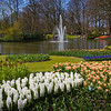Garden scene with lake and fountain at Keukenhof Gardens in The Netherlands. (Holland). Hyacinths, tulips, imperials, and muscari.