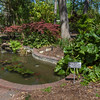 "Fish pond with ""no coins"" sign at Mercer Botanical Gardens."