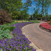 Garden path with spring flowers at Mercer Botanical Gardens.