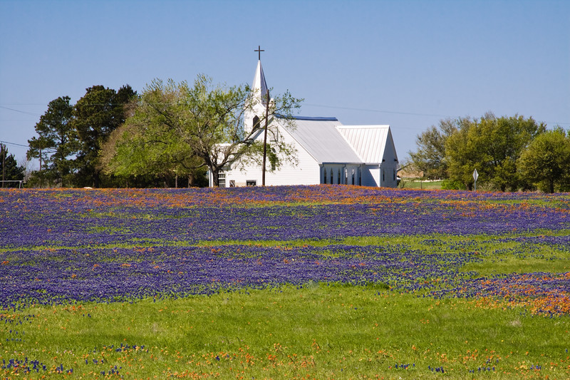 Country Church with a field of Texas Bluebonnets and Indian Paintbrush wildflowers, near Whitehall, Texas.