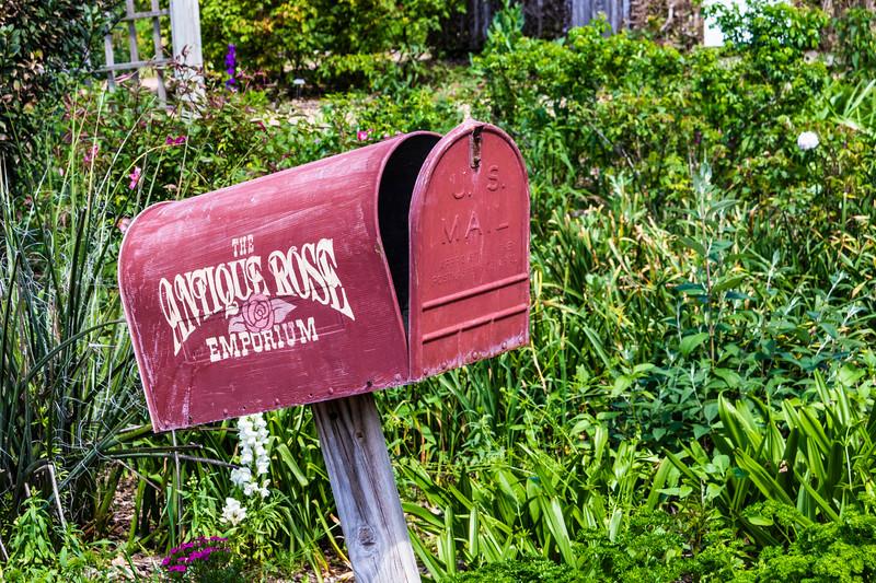 Mailbox at Antique Rose Emporium Gardens in Independence, Texas.