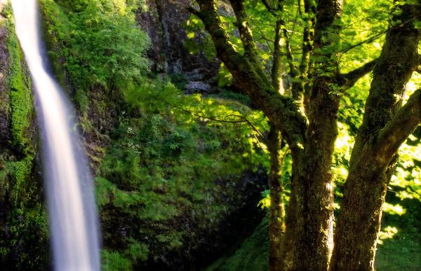 Gorge Falls*
