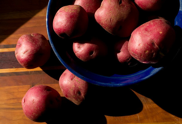 Red Potatoes, Blue Bowl Late afternoon light in the kitchen