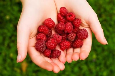 Raspberries Offered