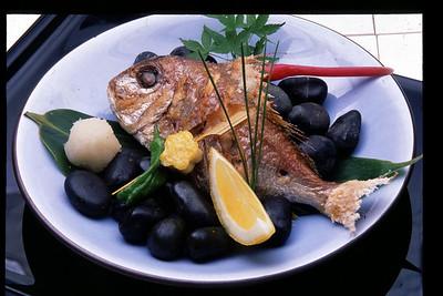 fish-1