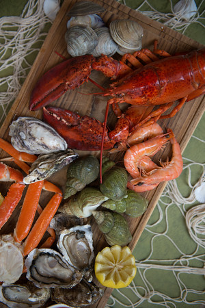 Lakshmi Harilela Food Photography
