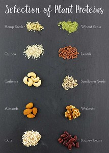 Selection of Plant Proteins