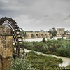 Old Roman waterwheel and bridge_A147484-21
