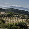 Hill Towns of Umbria -17