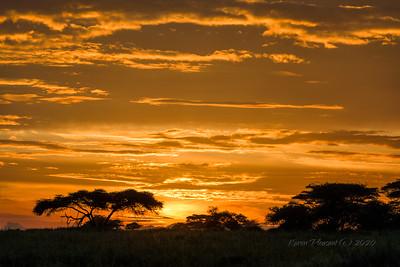 Sunrise on Serengeti