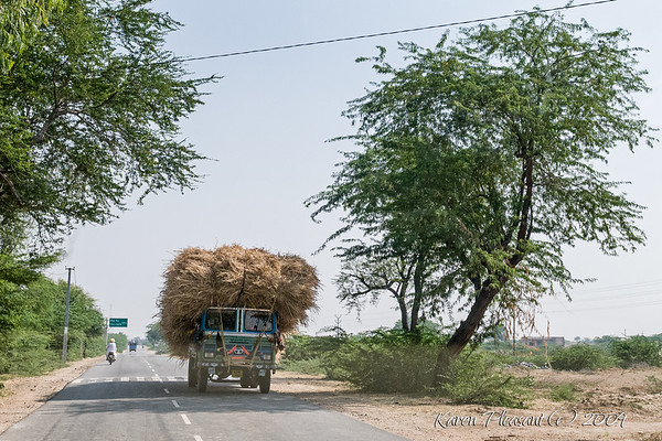 Typical Indian road