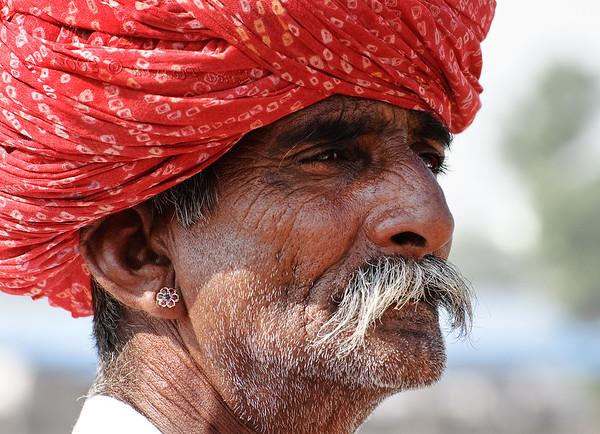 Pushkar Camel Fair. India