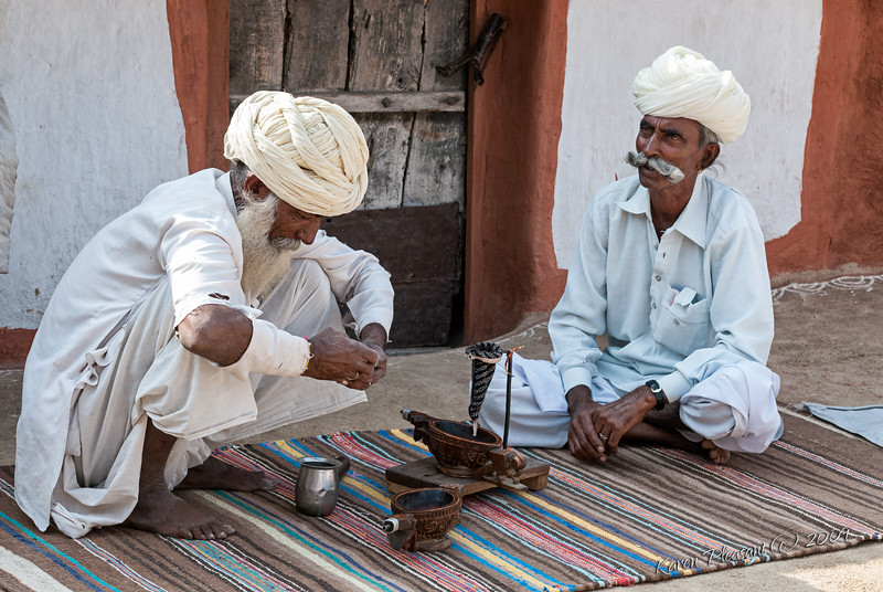 Opium ceremony, Bishnoi Tribe in Guda village
