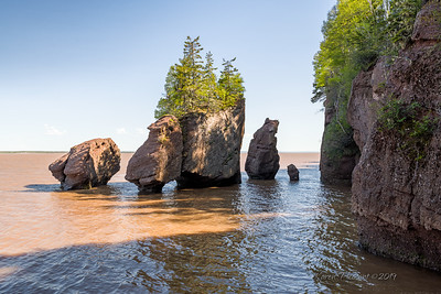 Hopewell Rocks - nearing high tide